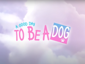 A Good day to be a dog